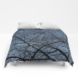 Treetop branches and leaves texture Comforters