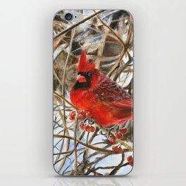 Winter Cardinal by Teresa Thompson iPhone Skin