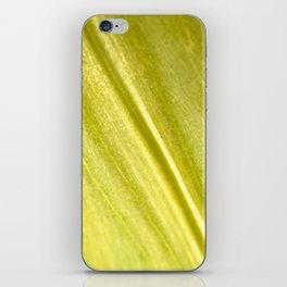 Tulip Trail iPhone Skin