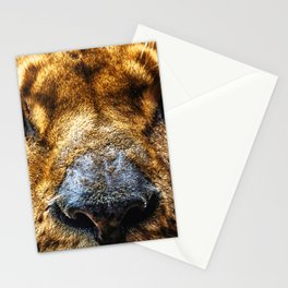 Strong Stationery Cards