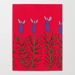 Lavender red Poster