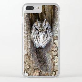Sleeping Screech owl Clear iPhone Case