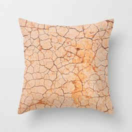 Cracked dry land pattern Throw Pillow