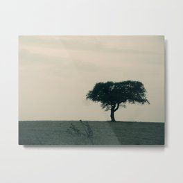 STAND ALONE IN THE WIND Metal Print