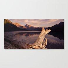 Alberta Driftwood Canvas Print