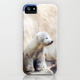 Polar Family iPhone Case