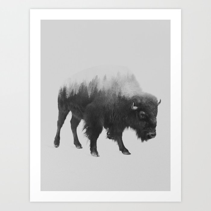 Discover the motif BISON (BLACK AND WHITE) by Andreas Lie as a print at TOPPOSTER