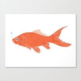 goldfish. Canvas Print