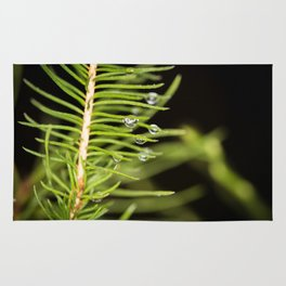 Spruce branch with drops Rug