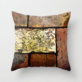 Brick Work Throw Pillow