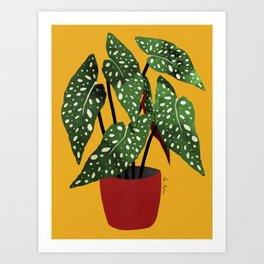 Begonia maculata pot watercolor Art Print