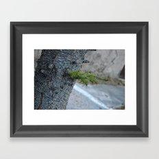 The detail of tree Framed Art Print