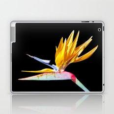 Bird of Paradise Flower Laptop & iPad Skin