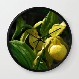 Rhode Island Wild Orchid Lady Slipper Flowers Wall Clock