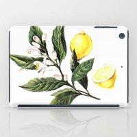 lemon iPad Cases featuring Lemon by Anna Yudina