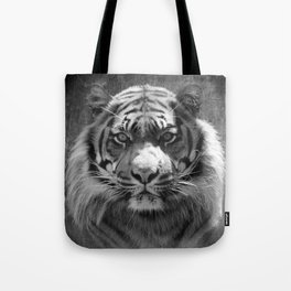 The eye of the tiger II (vintage) Tote Bag