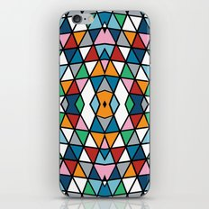 Geo Outline Colour iPhone & iPod Skin