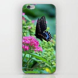Butterfly On Pentas Flower iPhone Skin