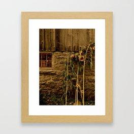 Farm Treasures Framed Art Print