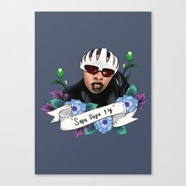 Supa Dupa Fly Canvas Print