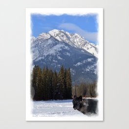 """""""Banff Wolf in Winter with Mt Cascade"""" Canvas Print"""