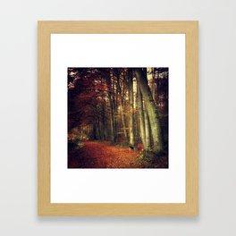 Fall Forest Reds Framed Art Print