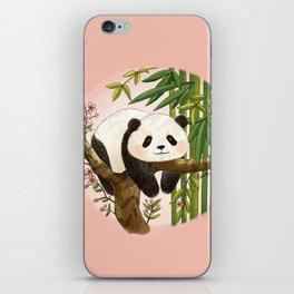 Panda under sunlight - Pink iPhone Skin
