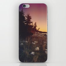 Seaside Sunset iPhone & iPod Skin