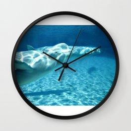 Ocean Blue Beluga Pairs Version 1 Wall Clock