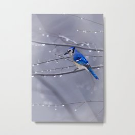 BLUE JAY IN THE RAIN Metal Print