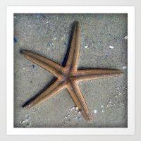 starfish Art Prints featuring Starfish by Nichole B.