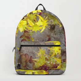 HAIRY COLLECTION (24) Backpack