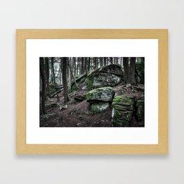 Algonquin Park, Ontario Framed Art Print