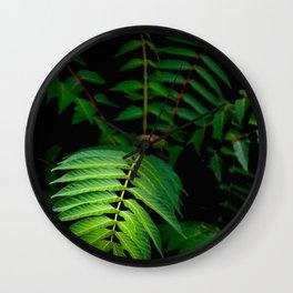 Illuminated Fern Leaf In A Dark Forest Background Wall Clock