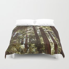 Redwood Forest XII Duvet Cover