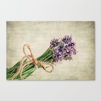 lavender Canvas Prints featuring Lavender by ThePhotoGuyDarren