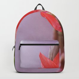 The Forbidden Promise Backpack