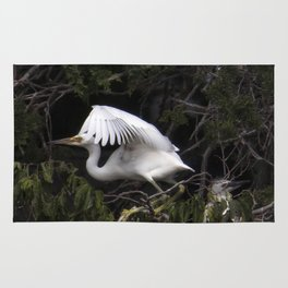 Egret Learning to Fly Rug