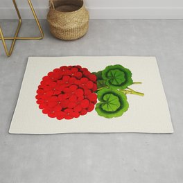 Vintage Scientific Floral Illustration Large Red Flowers Cranesbill Geranium Rug