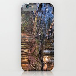 Vaughan Woods Foliage (5) iPhone Case