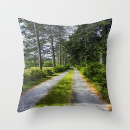 Country Path Walks Throw Pillow