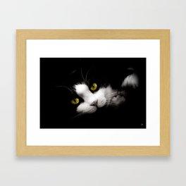 Lhassa Framed Art Print