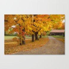 The driveway Canvas Print
