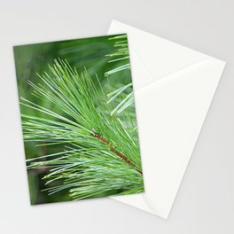 Tree Lines Stationery Cards