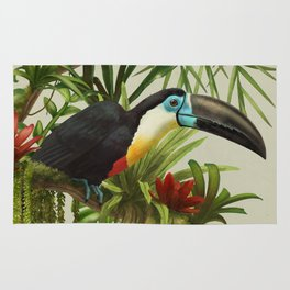 Channel- billed toucan vintage illustration. Rug