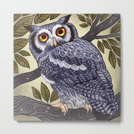 White Faced Owl Metal Print