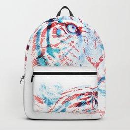 Hidden Information Backpack