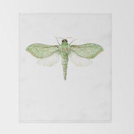 Pepe Tuna / Puriri Moth 2016 Throw Blanket