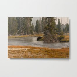 Bison Down by the River's Edge Metal Print