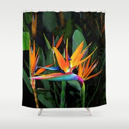 Midnight in Hawaiian Paradise Shower Curtain